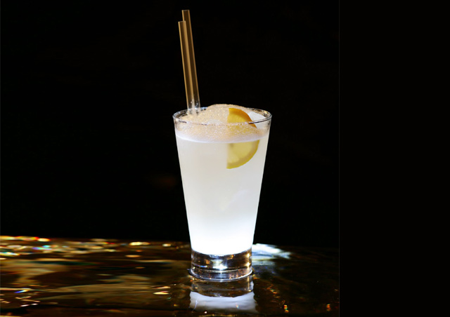 Gin Fizz and Lemon Cocktail